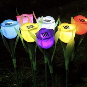 leds-de-tulipanes