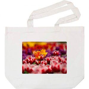 producto-bolsa-tulipanes-compra-campo