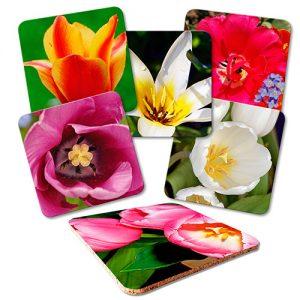 posavasos-tulipán-piedra.absorvente-variedad