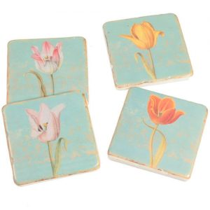 posavasos-tulipán-variedad