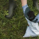 preparar suelo tierra fertil