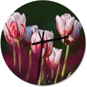 producto-reloj-pared-tulipanes-rembrandt