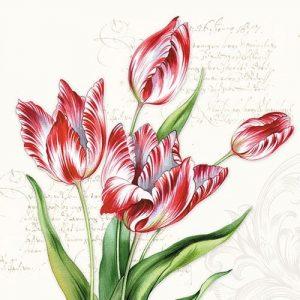 producto-servilletas-ramo-tulipanes-rojos