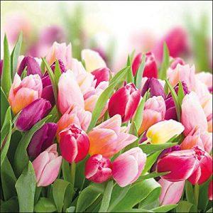 producto-servilletas-tulipanes-ramos