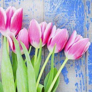 producto-servilletas-tulipanes-rosas
