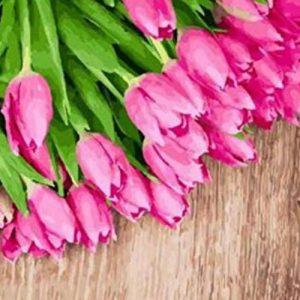 productos-puzzle-tulipanes-ramos-rosas