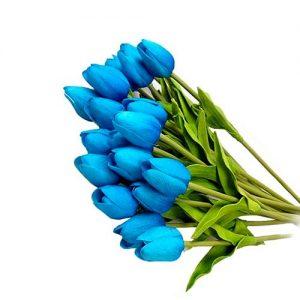 Tulipán-azul-20-pcs