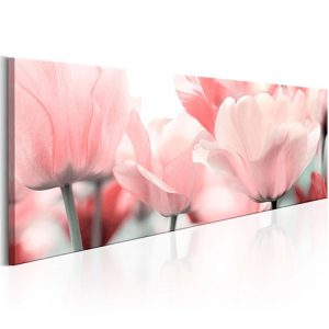 Tulipán-rosa-cuadro