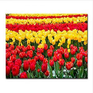 cuadro-tulipanes-campo