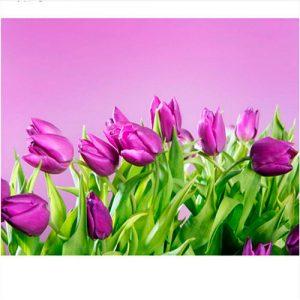 cuadro-tulipanes-lilas-campo