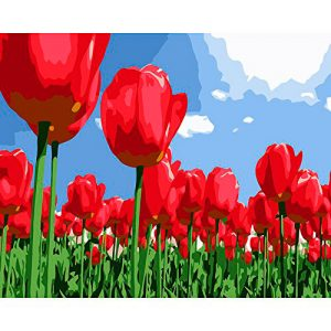 cuadro-tulipanes-rojos-campo