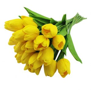 tulipan-amarillo-ramos