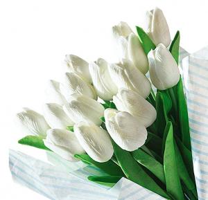 tulipanes-blancos-latex