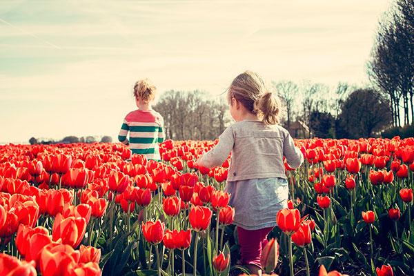 niña.campo.tulipanesjpg